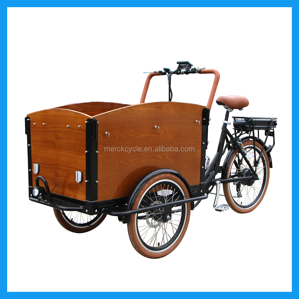 3 Wheel Electric Bicycle Cargo Bike With Cabin For Carrying Pets