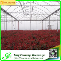 Stong windbreak arch pipe greenhouse for sale