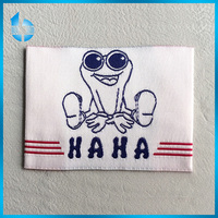Factory Direct Supply Cheap Woven Label
