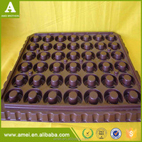 OEM Vacuum Forming Greenhouse Planting Trays Corn Vegetables Trays