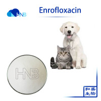 Enrofloxacin injection 10% veterinary pharmaceutical