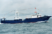 42M Steel Trawler Stern Ramp Fishing Trawler Fishing Boat For Sale