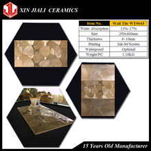250x400mm WT0043 Latest Design Ceramic Wall Tile 6mm Thickness