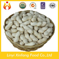 Buy Factory Supply 100% Pure Quality Roasted Peanuts in China on ...