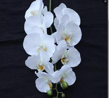 wholesale real touch cheap decorative white artificial Phalaenopsis flower for home decor