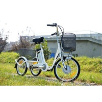 China good price high quality 3 wheel electric tricycle pedal assisted with two strong large basket SMALL SIZE
