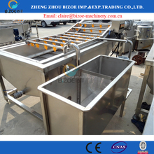 500kg/h Carrot potato ginger fruit vegetables bubble washing production line in Pakistan