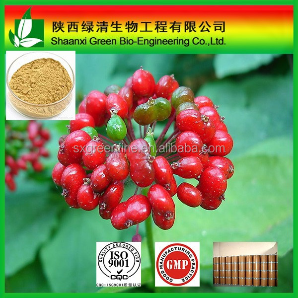 High purity Panax ginseng extract powder, Panaxoside extract, Ginsenoside 80%