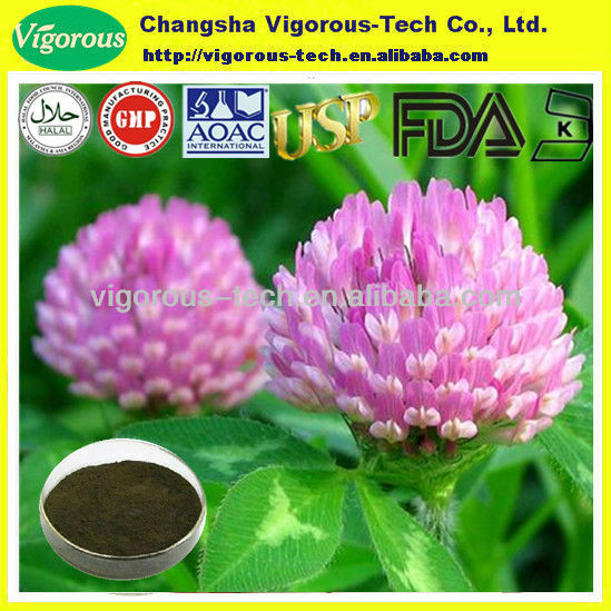 100% Natural Red Clover Extract/Red Clover Extract powder/red clover isoflavones