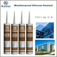 Nature silicone neuter Glass glue