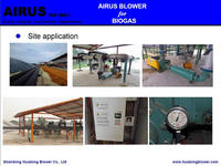 Biogas and Syngas Production Solution.