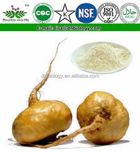 ISO certificate Factory Supply penis strong medicine,Maca extract,medicine for long time sex 10:1