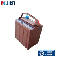 China 8V 145Ah lead acid maintenance free golf cart battery