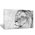 Custom Animal Photo Canvas Art Prints HD Black and White Lion Picture Canvas Printing Ready to Hang Wall Decor Goods