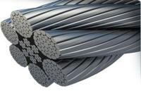 Line Contacted Steel Wire Rope (6X36WS+IWR)