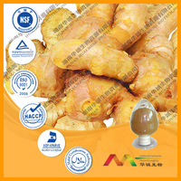 GMP Supplier Extraction of Ginger Oleoresin