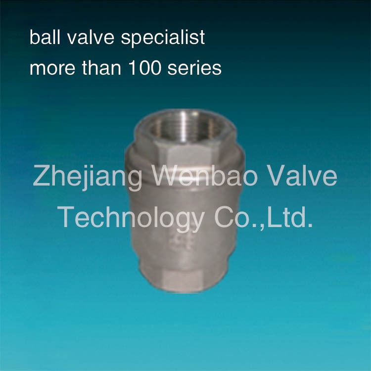 spring loaded non return valve 1000psi / stainless steel vertical lift check valve