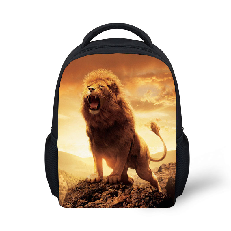 China Manufacturer Europe Most Fashion 12 Inch bag pack school for boy