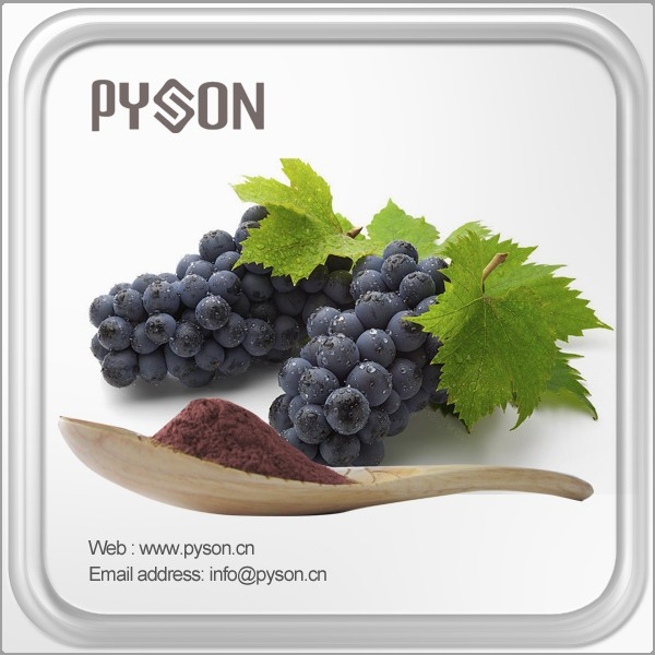 EU standard grape seed extract proanthocyanidin with high quality