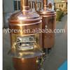 300l Micro Brewery For Sale With