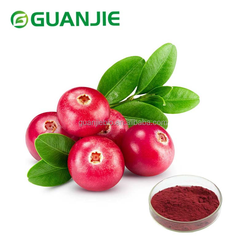 Top Quality Cranberry Extract Powder 25% Proanthocyanidin