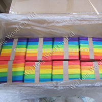 colorful and high quality popsicle ice cream stick mold