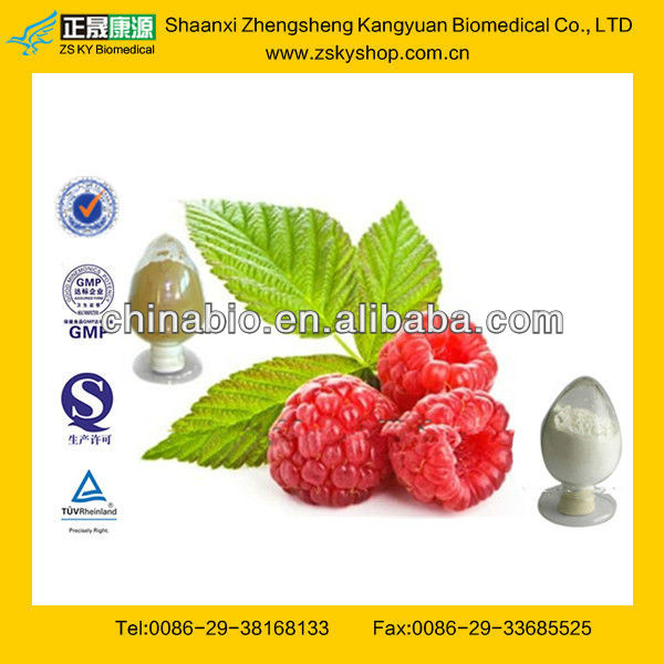Nature Made Raspberry Ketone from GMP Manufacturer