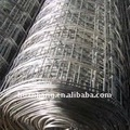 Galvanized Welded Wire Mesh (factory)