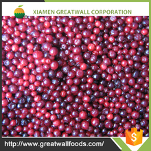 china supply frozen lingonberry wholesale