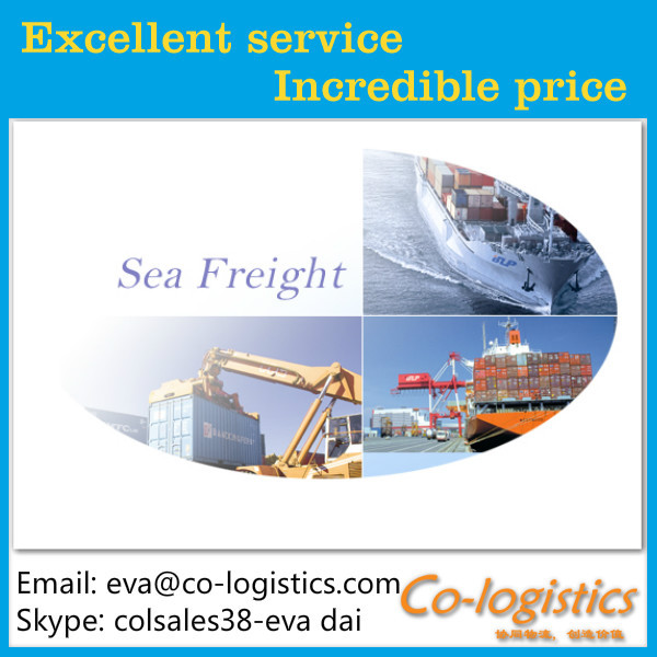 cheap and professional sea shipping /ocean freight from china to VALPARAISO ------Ben(skype:colsales31)