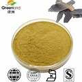 Factory Supply Natural Radix Scrophulariae Extract Powder 1~5% Picfeltarraenin IA