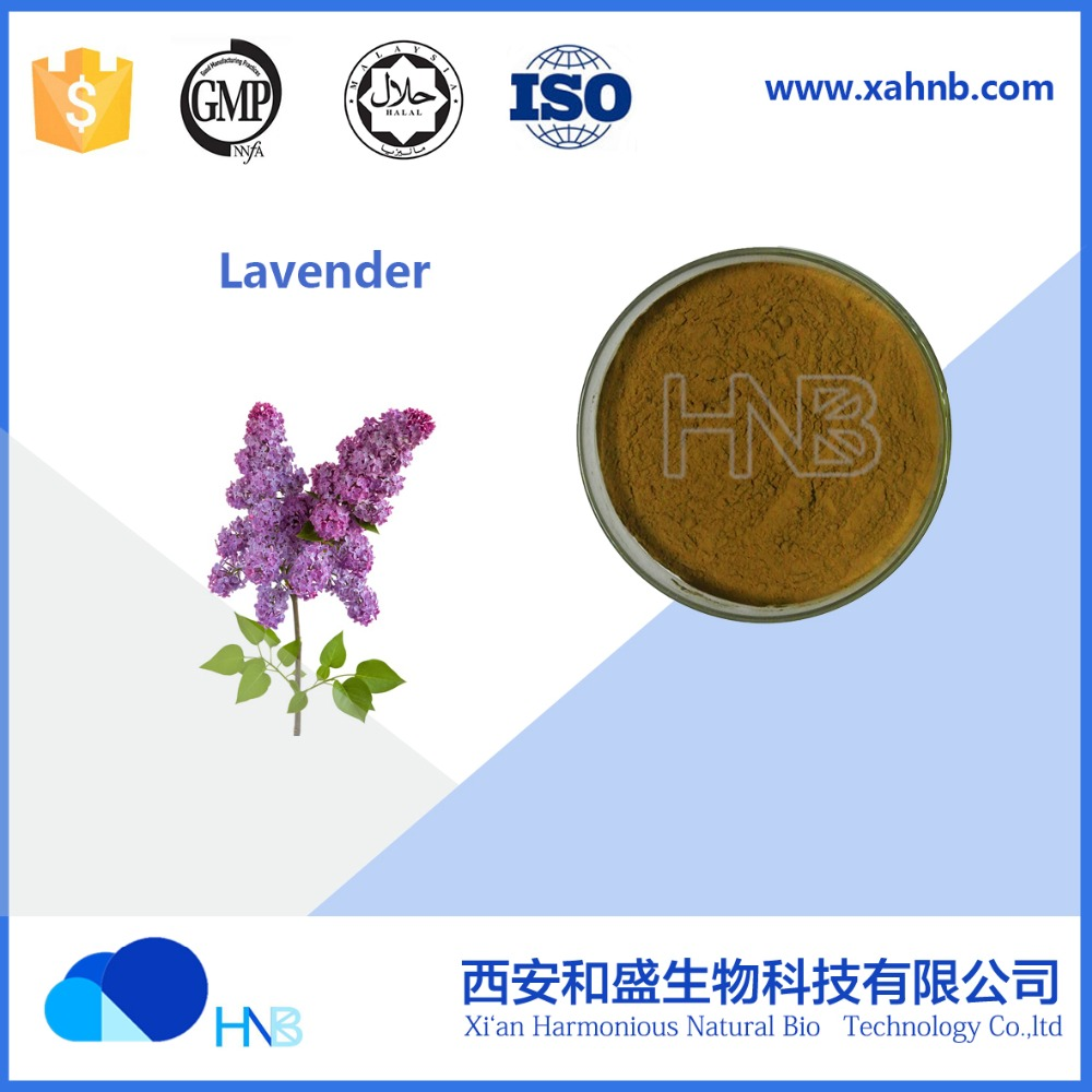HNB Supply 100% Pure Lavender extract / Lavandula P.E. wholesale