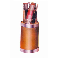 LV 0.6/1KV XLPE Insulated PVC Sheathed Flame Retardant Electric Cable