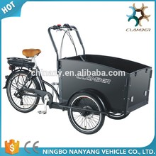 Direct Factory Price Battery Operated Cargo Trike
