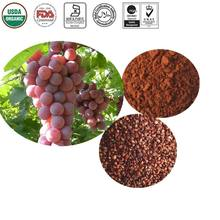 Grape Seed Extract/Proanthocyanidins OPC/ 95% HPLC