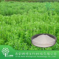 High Quality Stevia leaf extract Buy Steviol Glycoside 90%-95%