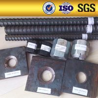 high tensile fasteners nut and bolt/post tensioning screw thread steel bar