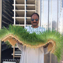 2017 Speical design supply wheatgrass grower