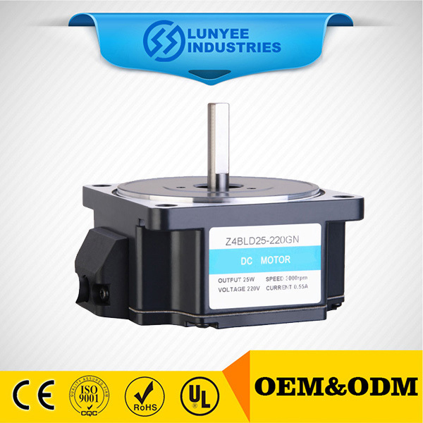 small low rpm 48v brushless dc gear motor