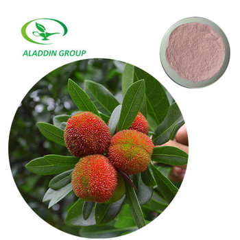 Competitive Price and Top Quality Yumberry Juice Powder