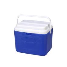 Portable new design car cooler box