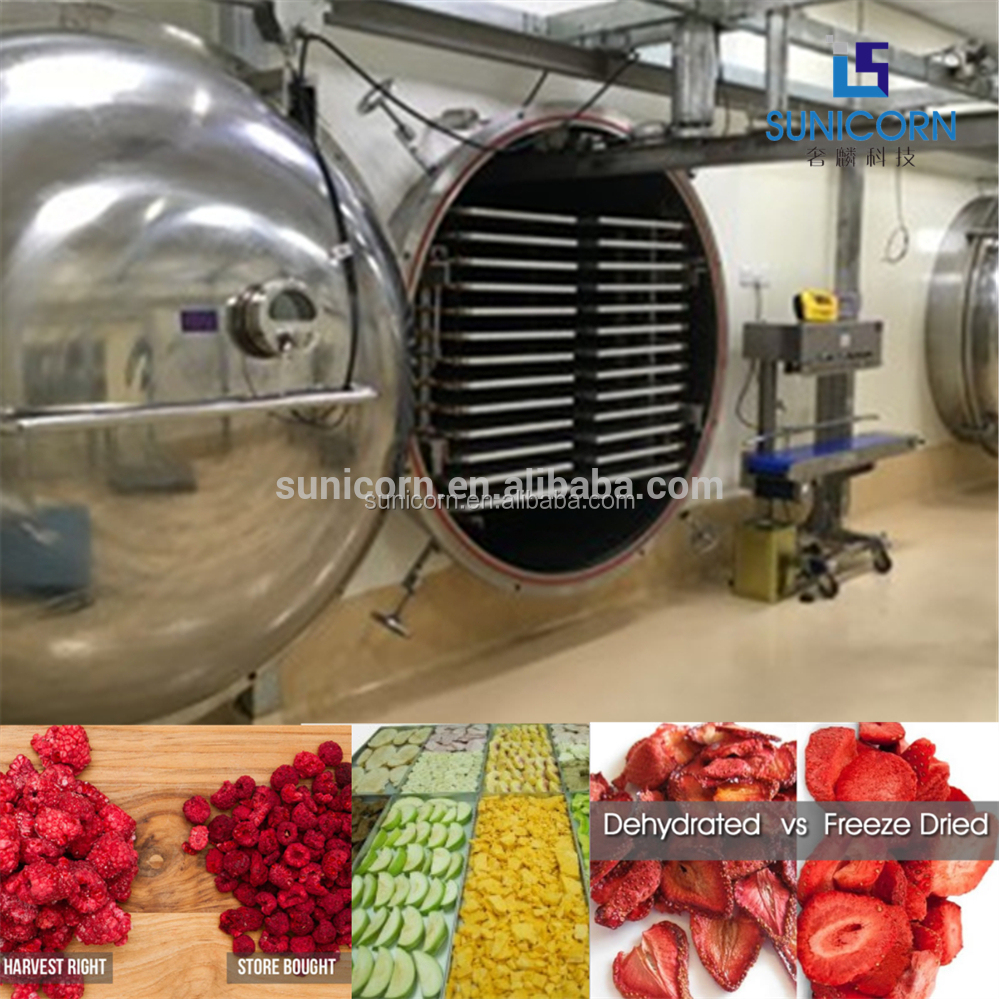 Chinese Shenzhen Vacuum Food Freeze Dryer Commercial Fruit Freeze Drying Machine for Sale