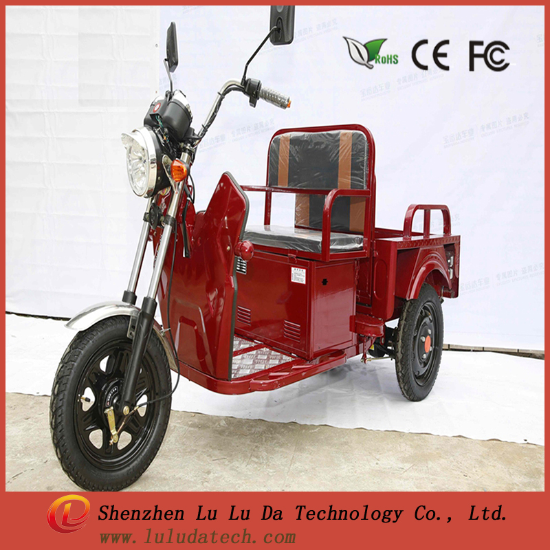 Chinese Customized electric motorcycles 48V 650W 15pipes three wheel electric cargo bike