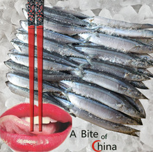 top grade large stock whole round pacific saury #1 size frozen pacific saury