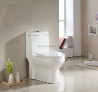 8010S/W Normal wc toilet size, Types of water closet toilet for Dubai market