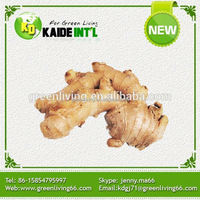 Chinese Fresh Ginger 150g Products