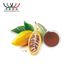 Best quality fair price 100% pure anti-cancer cocoa extract