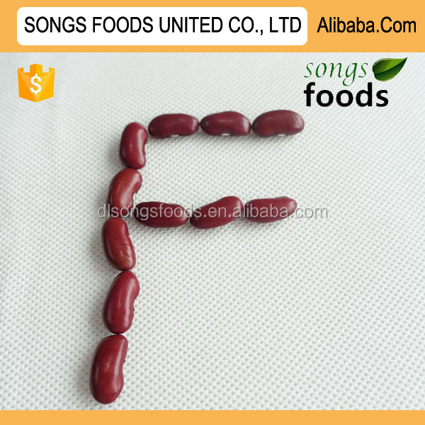 Factory Low Price Canned Red Kidney Beans