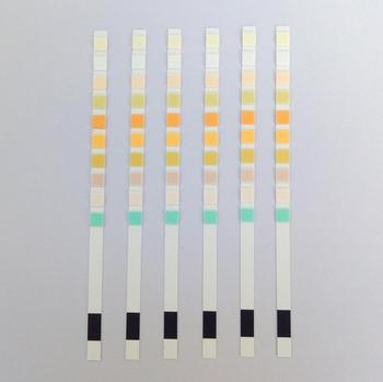 14 Parameters  Uncut Sheets Urine Test Strips