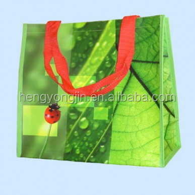 Top Quality hot sales Non Woven Shopping Bag with Glossy Lamination